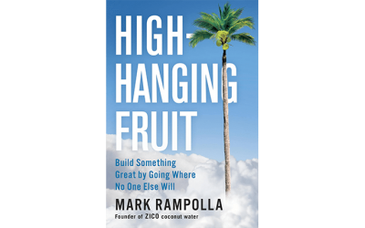 Buzzhive-Book-Review-High-Hanging-Fruit-400x250 Blog