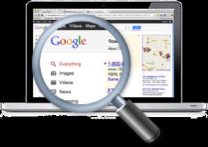 left_box_image1-300x212 Search Engine Optimization & Online Marketing